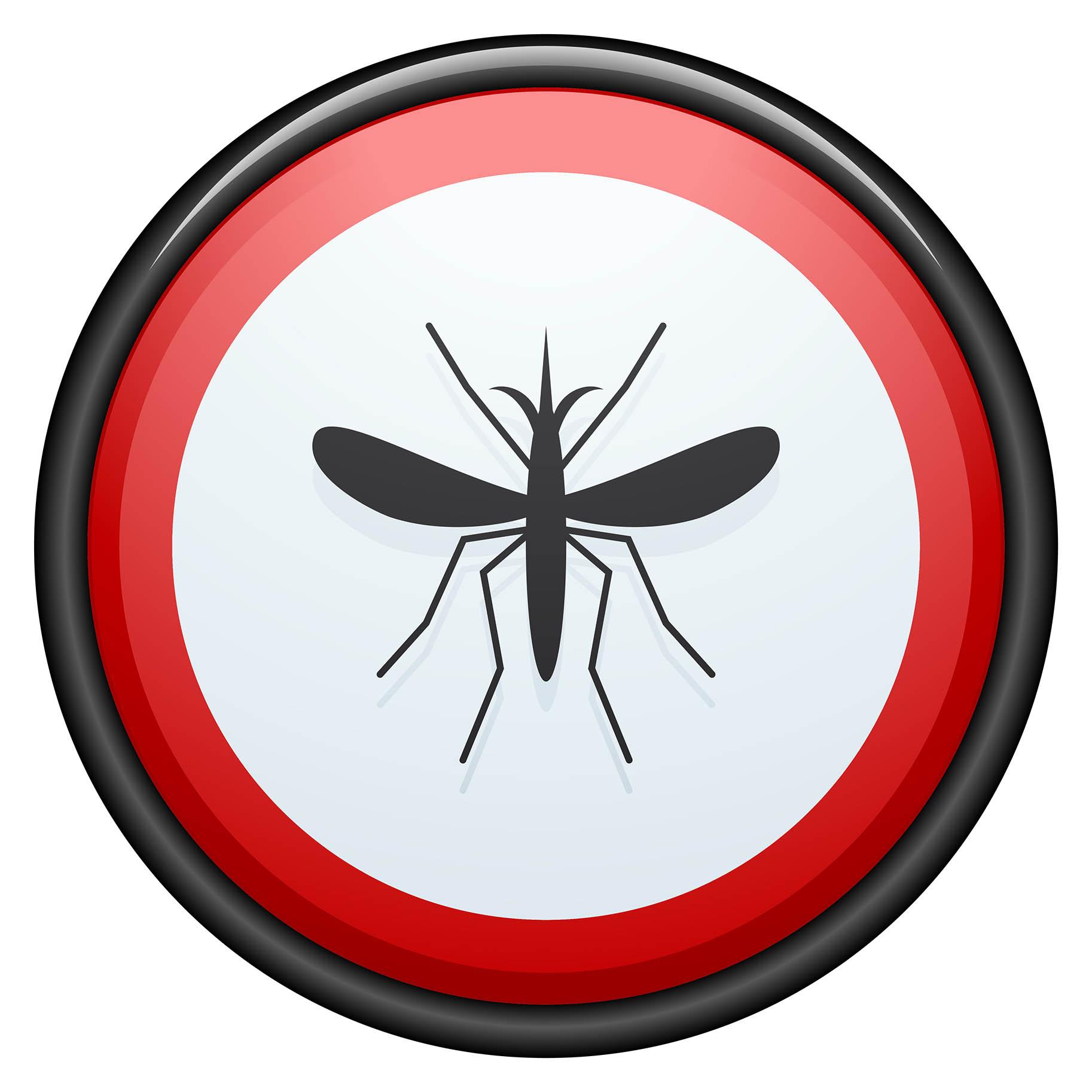 segnale di pericolo zanzare