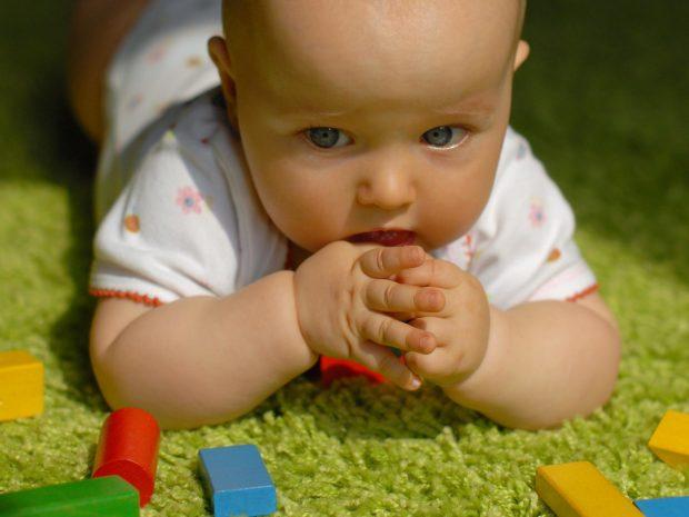 neonato avvicina alla bocca piccolo mattoncino colorato