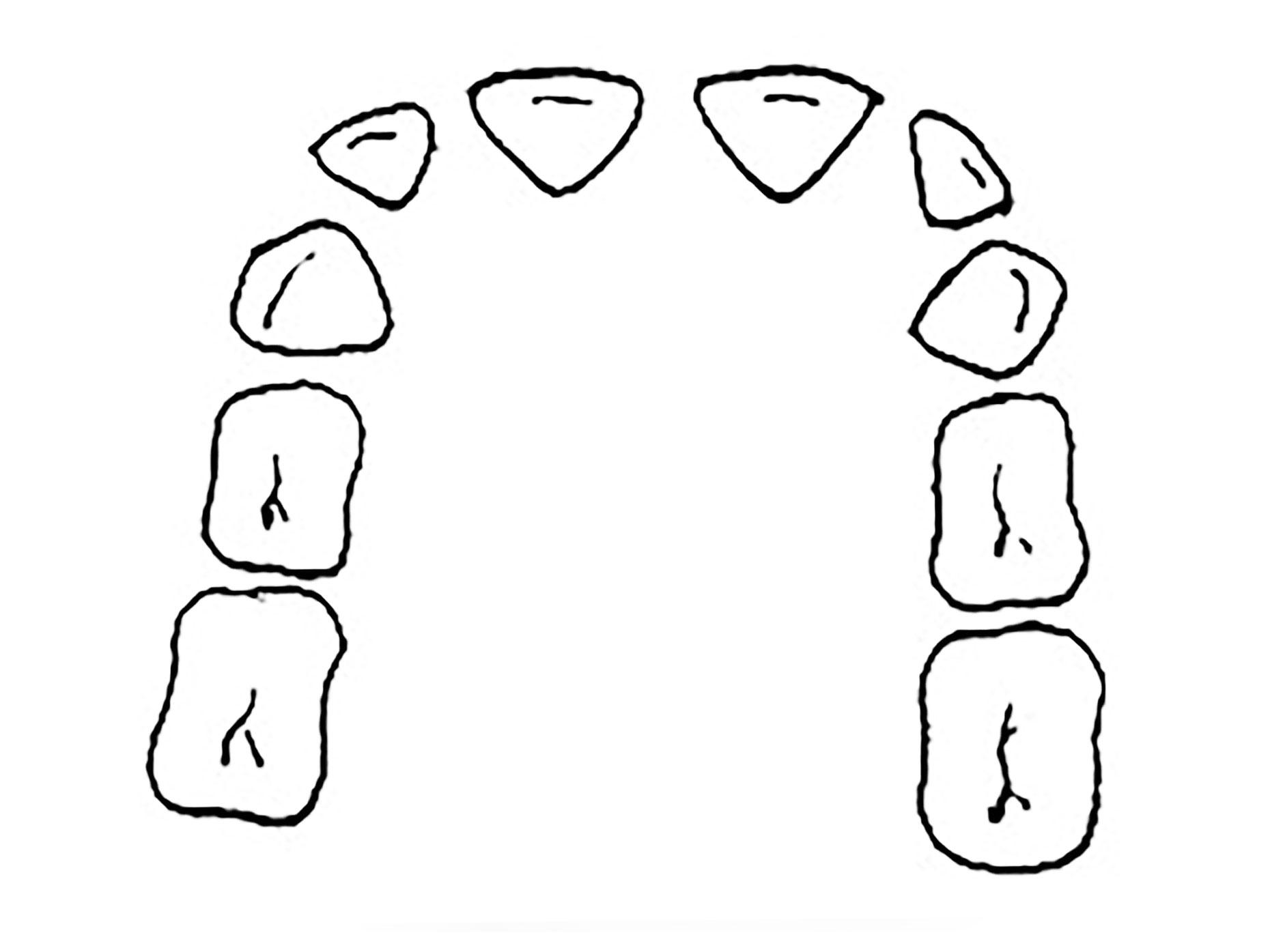 immagine della dentatura