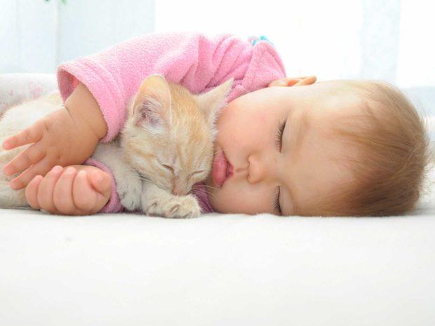 neonato dorme abbracciato ad un gatto