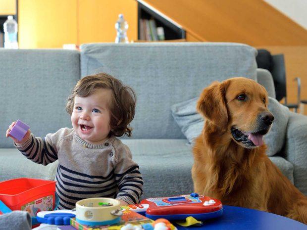 Bambino gioca accanto ad un cane