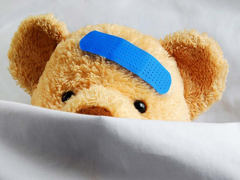 orsetto con cerotto blu sulla fronte